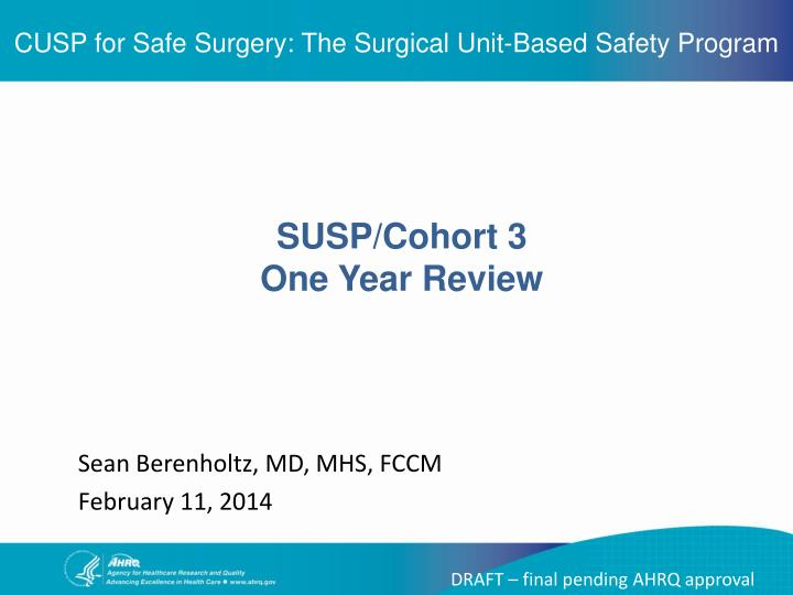 Cusp for safe surgery the surgical unit based safety program