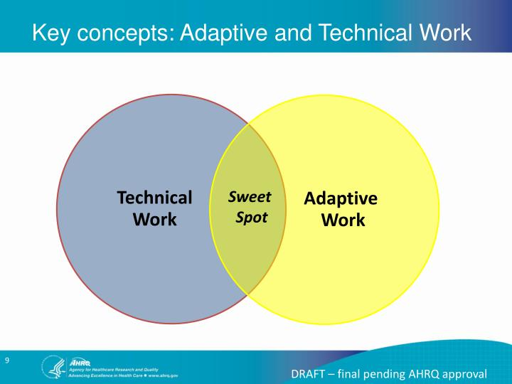 Key concepts: Adaptive and Technical Work