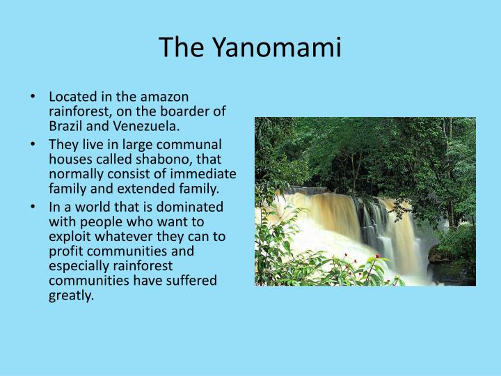 The yanomami2