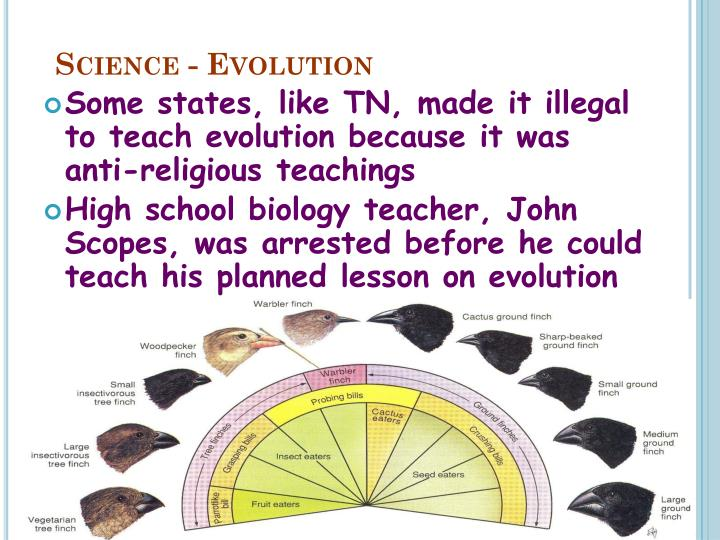 Science - Evolution