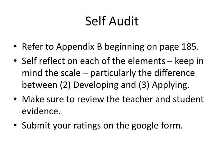 Self Audit