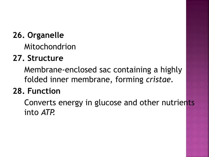 26. Organelle