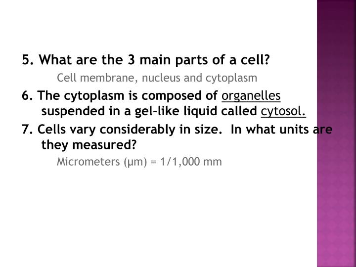 5. What are the 3 main parts of a cell?