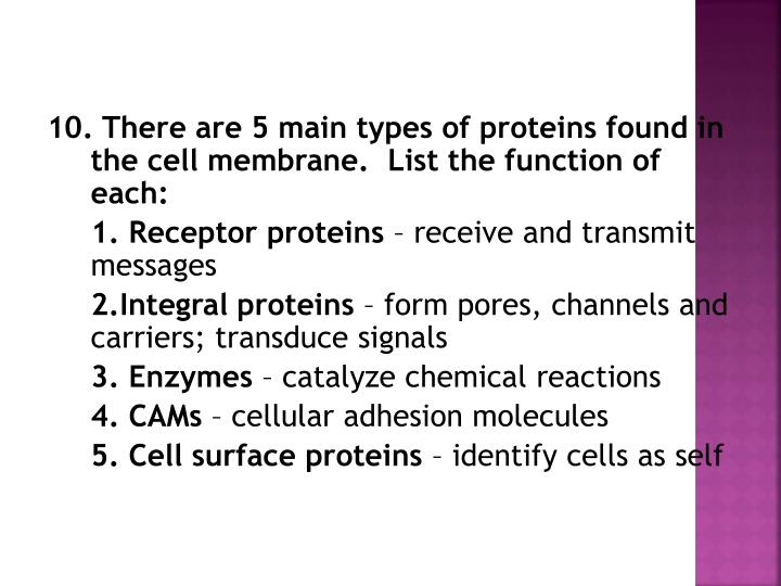 10. There are 5 main types of proteins found in the cell membrane.  List the function of each: