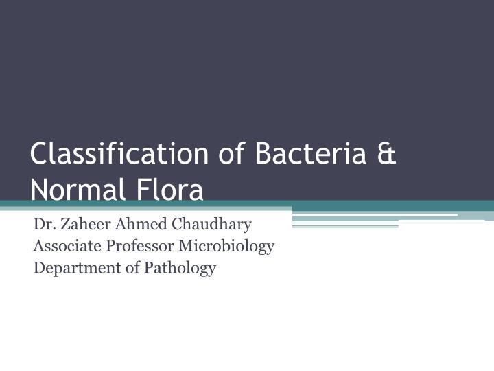 Classification of bacteria normal flora