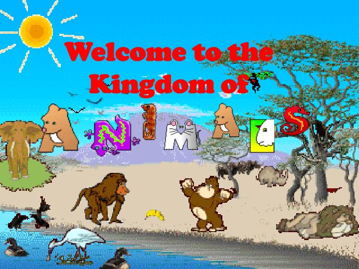 Welcome to the Kingdom of