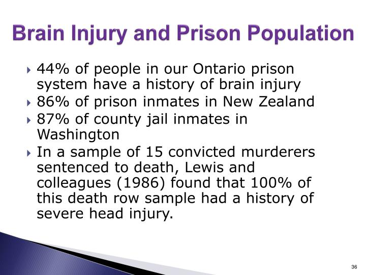 Brain Injury and Prison Population