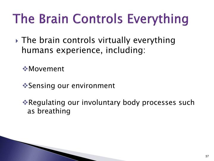 The Brain Controls Everything