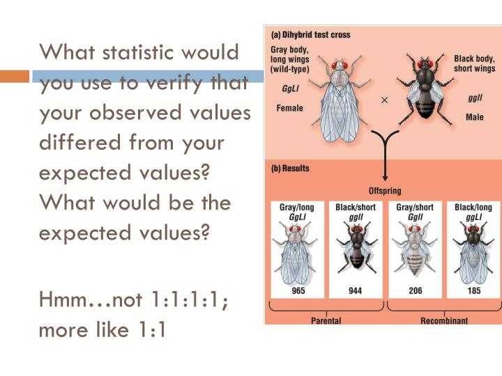What statistic would you use to verify that your observed values differed from