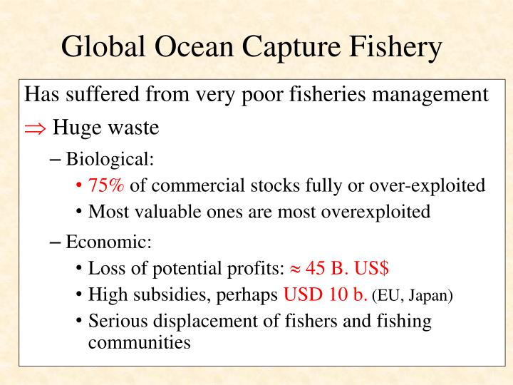 Global ocean capture fishery