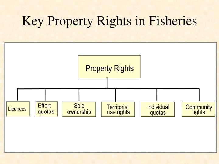 Key Property Rights in Fisheries