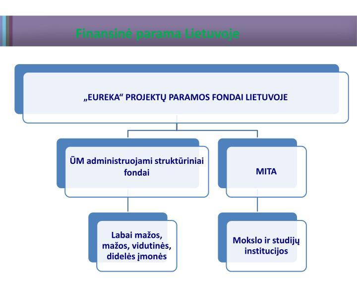 Finansinė parama Lietuvoje