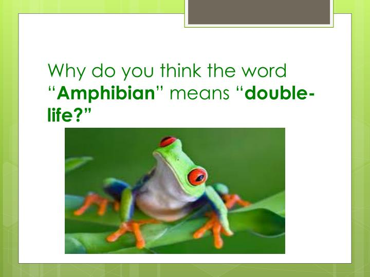 """Why do you think the word """""""