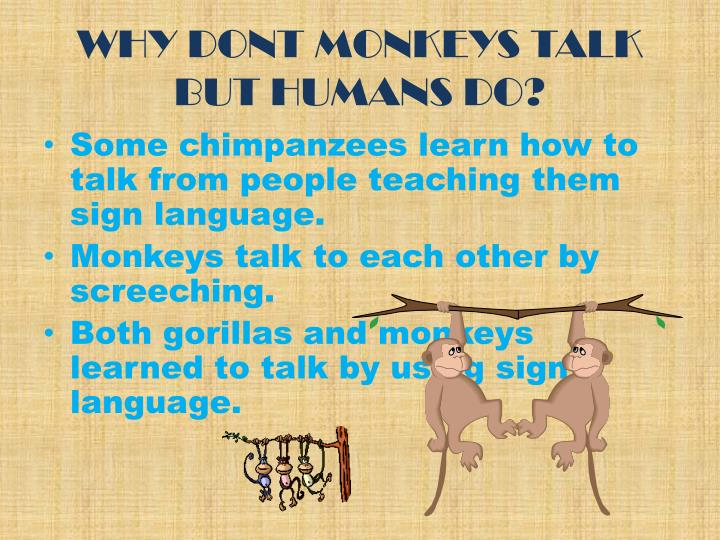 WHY DONT MONKEYS TALK BUT HUMANS DO?