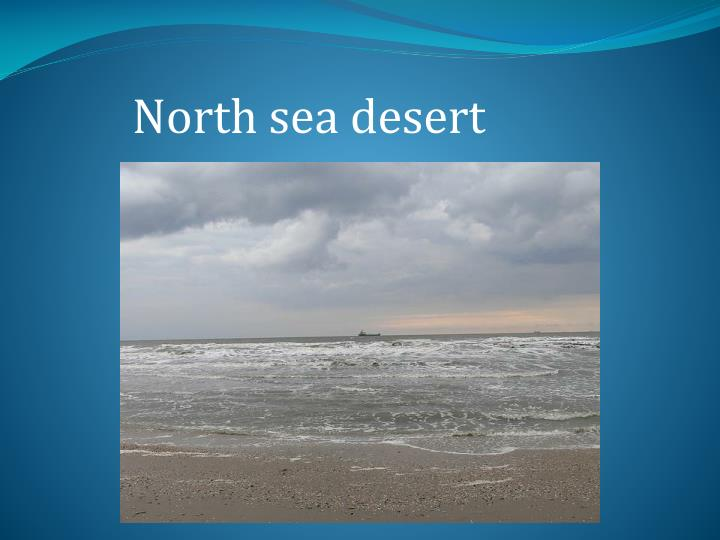 North sea desert