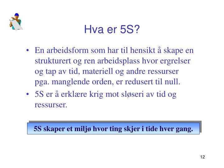 Hva er 5S?