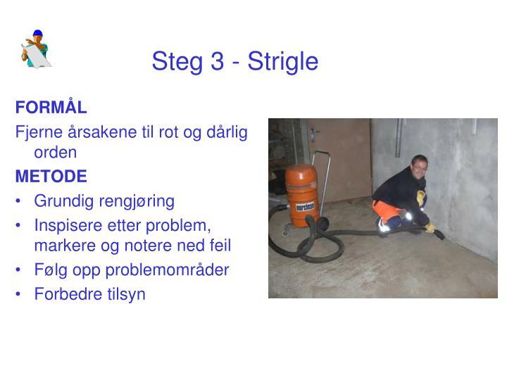 Steg 3 - Strigle