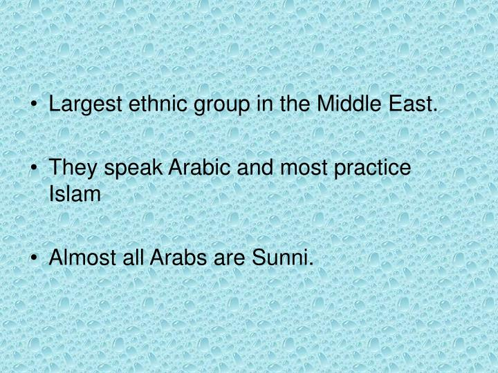 Largest ethnic group in the Middle East.