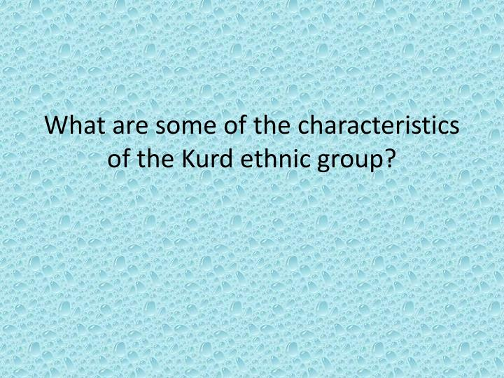 What are some of the characteristics of the Kurd ethnic group?