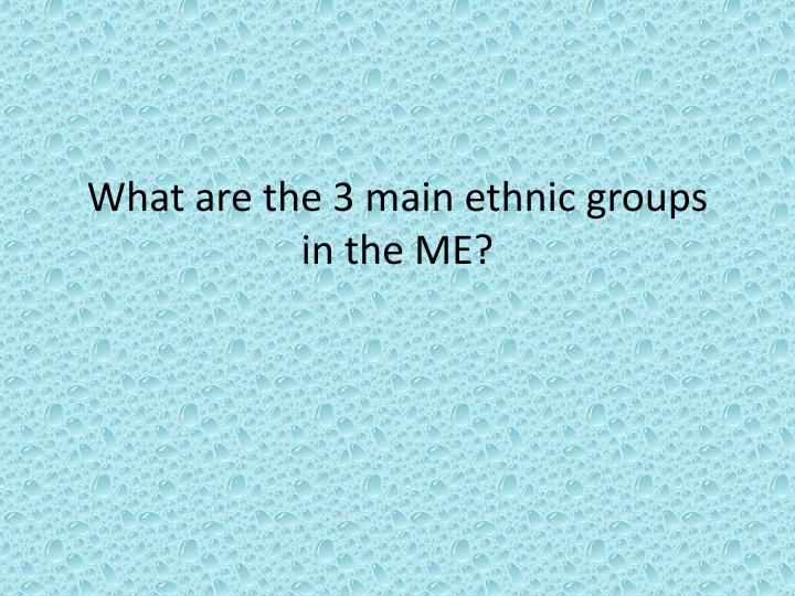 What are the 3 main ethnic groups in the ME?