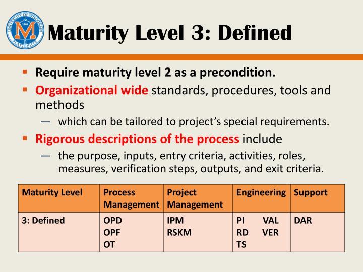 Maturity Level 3: Defined