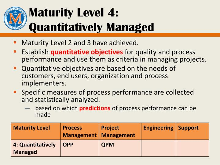 Maturity Level 4: