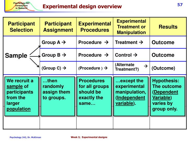 Experimental design overview