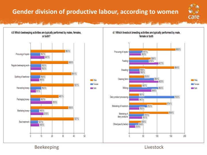 Gender division of productive