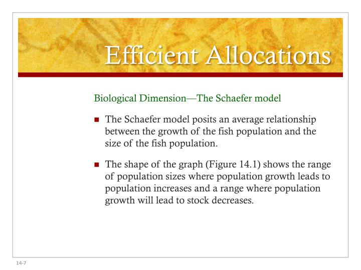 Efficient Allocations