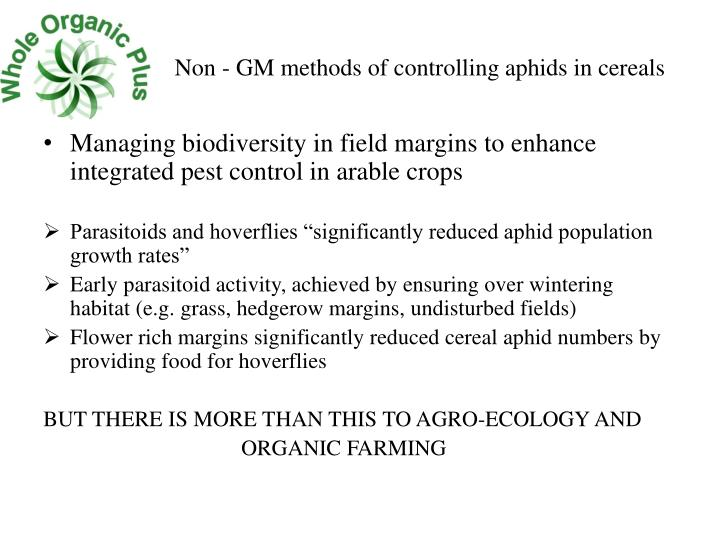 Non - GM methods of controlling aphids in cereals
