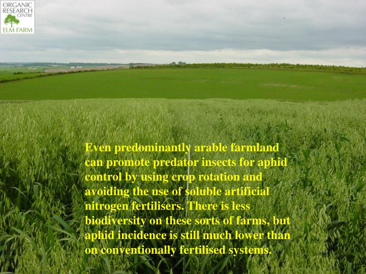 Even predominantly arable farmland can promote predator insects for aphid control by using crop rotation and avoiding the use of soluble artificial nitrogen fertilisers. There is less biodiversity on these sorts of farms, but aphid incidence is still much lower than on conventionally fertilised systems.