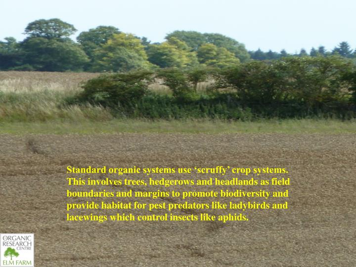 Standard organic systems use 'scruffy' crop systems. This involves trees, hedgerows and headlands as field boundaries and margins to promote biodiversity and provide habitat for pest predators like ladybirds and lacewings which control insects like aphids.