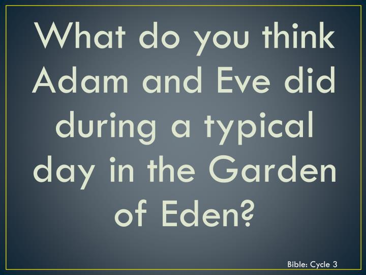 What do you think Adam and Eve did during a typical day in the Garden of Eden?