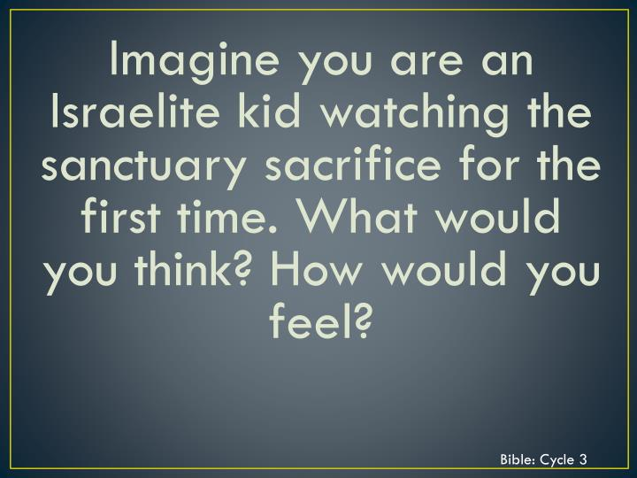 Imagine you are an Israelite kid watching the sanctuary sacrifice for the first time. What would you think? How would you feel?