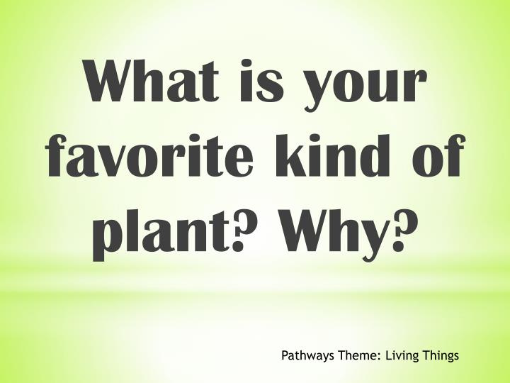 What is your favorite kind of plant? Why?
