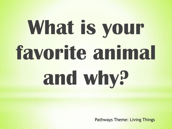 What is your favorite animal and why?