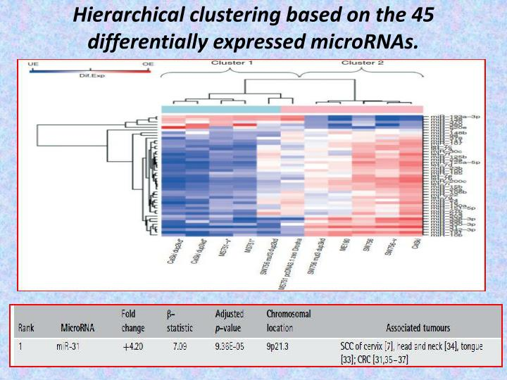 Hierarchical clustering based on the 45 differentially expressed microRNAs.