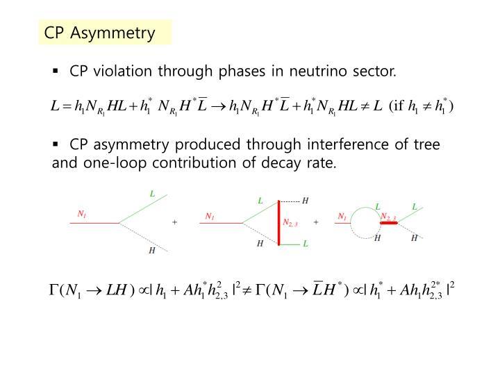 CP Asymmetry