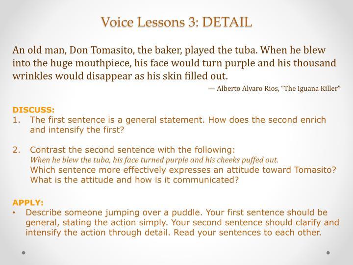 Voice Lessons 3: DETAIL