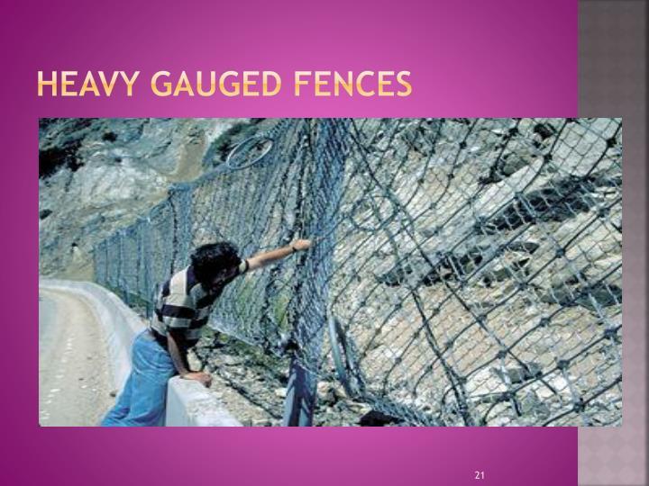 Heavy Gauged Fences