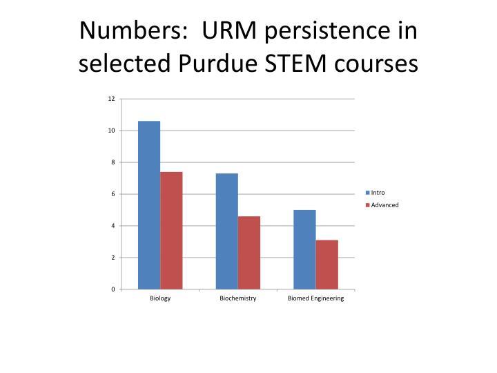 Numbers:  URM p