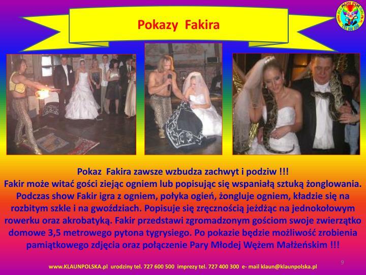 Pokazy  Fakira