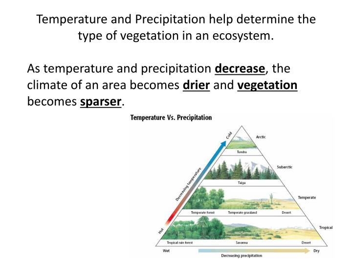 Temperature and Precipitation help determine the type of vegetation in an ecosystem