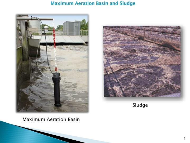 Maximum Aeration Basin and Sludge