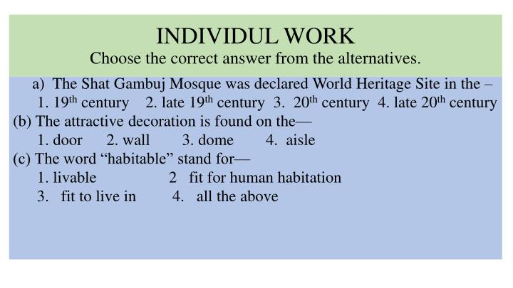 INDIVIDUL WORK