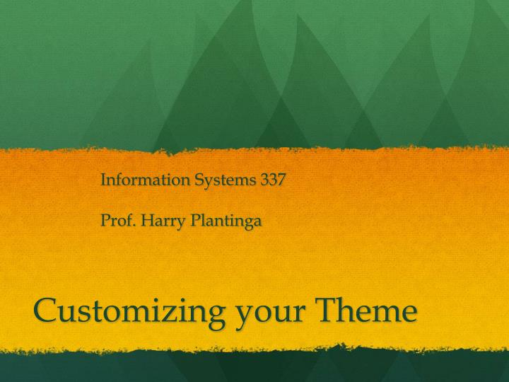 Information Systems 337
