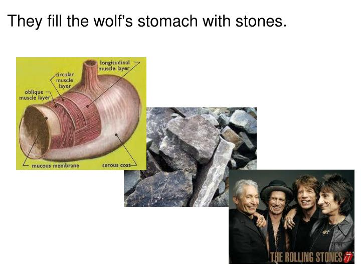 They fill the wolf's stomach with stones
