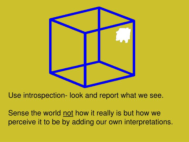Use introspection- look and report what we see.