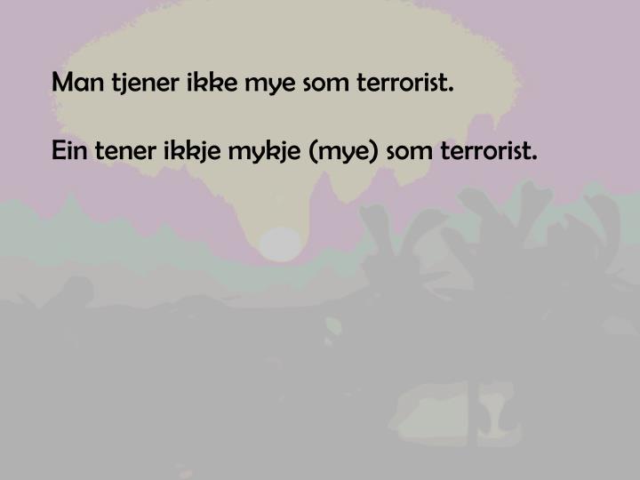 Man tjener ikke mye som terrorist.