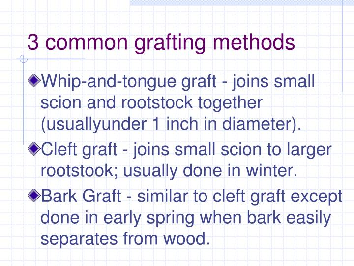 3 common grafting methods